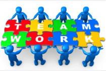 Organització dels equips de treball